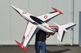 Mini Diamond white - RC Jets models - Aviation Design